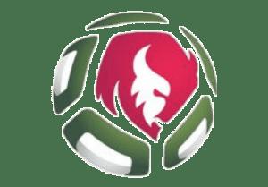 turnirnaya-tablicza-belorusskaya-liga-chempionat-belarusi-po-futbolu